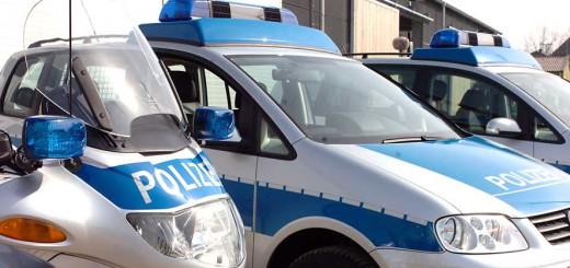 Polizisten nahmen den tatverdächtigen Taschendieb fest