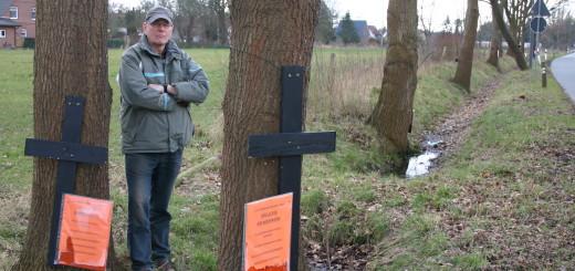 Will die geplante Fällung der Bäume am Ehlersdamm verhindern: Lothar Dräger, erster Vorsitzender der Siedlergemeinschaft Kuhkamp