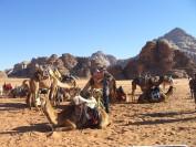 Unterwegs im Wadi Rum. Foto: Kaloglou