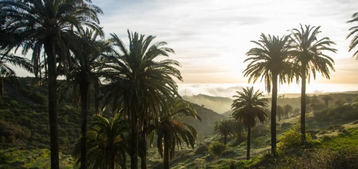 Sonnenuntergang in Valle Gran Rey, (Tal des großen Königs), das mit seinen Palmen und Terrassenfeldern bei Touristen sehr beliebt ist. Foto: Area de Turismo del Cabildo Insular de La Gomera