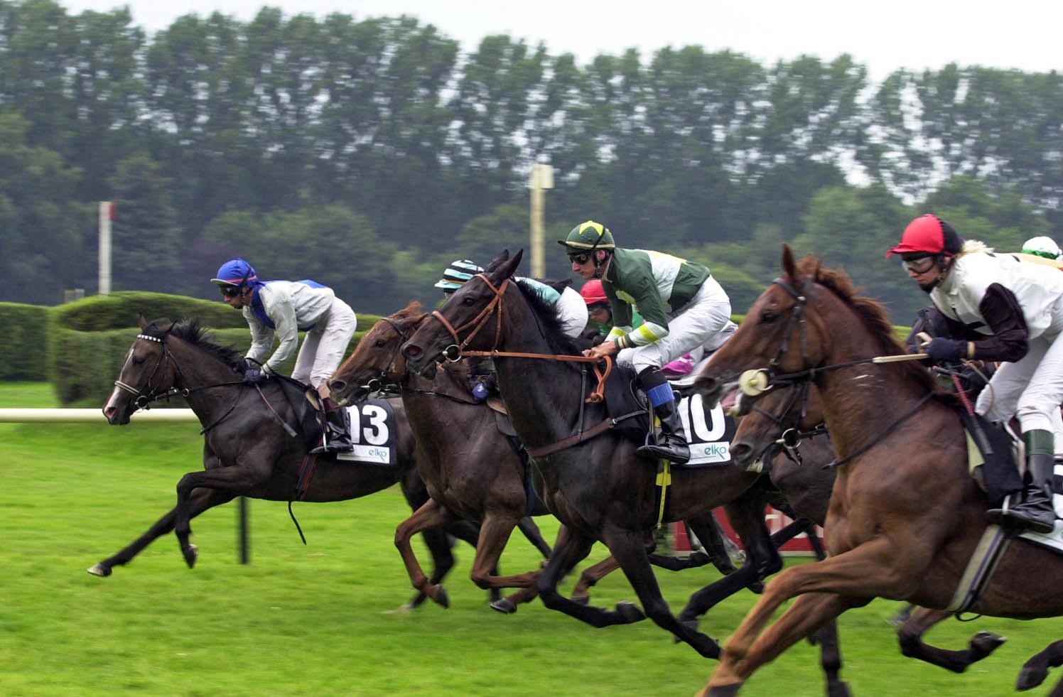 Pferderennen England