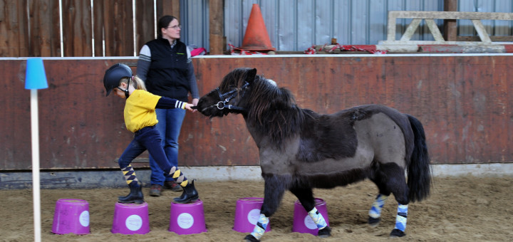 In Grüppenbühren trainieren Kinder mit ihren Ponys für die Ponyliga Oldenburg-Nord. Foto:Konczak