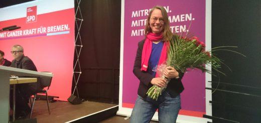Sascha Aulepp auf dem SPD-Parteitag. Foto: WR