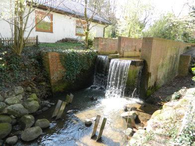 Das Wasserrad am Scharmbecker Bach in der Kreisstadt war in die Jahre gekommen und ist sanierungsbedürftig. Aus Mitteln der Klosterholz-Tombola soll es nun wieder instand gesetzt werden. Foto: Bosse
