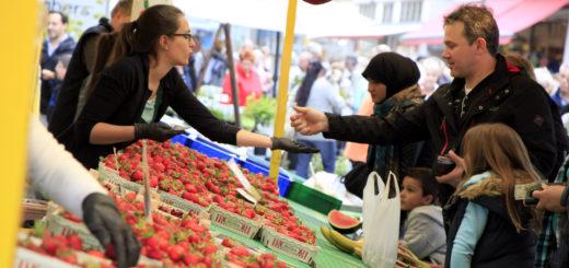 Beim Erdbeer- und Spargelfest sorgen nicht nur Obst und Gemüse für glückliche Gesichter, sondern auch das Rahmenprogramm. Foto: Eckert