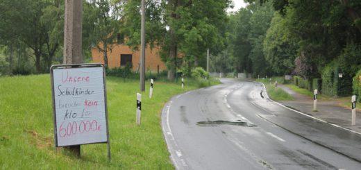 Die Stromer Landstraße ist gesäumt mit Plakaten, mit denen sich die Bürger gegen die Schulschließung wehren. Foto: Niemann