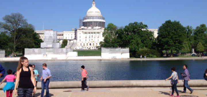 Sonnenbad mit Blick auf das Kapitol in Washington. Foto: Kaloglou