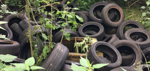 """An der Straße """"Vor den Seelanden"""" im Landschaftsschutzgebiet am Deich in Huchting wird regelmäßig Müll abgelagert. Viele nutzen den Weg zudem als Abkürzung. Müllproblem Abfall Natur Reifen v Abkürzung Schleichweg"""