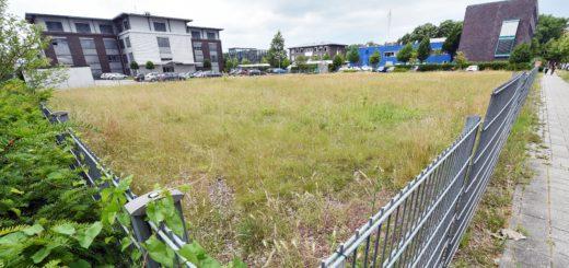 Auf diesem Grundstück wird das Gebäude errichtet. Foto: Schlie