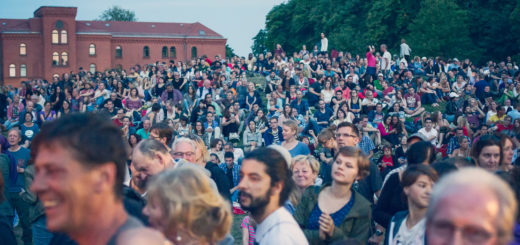 Rund 8.000 Menschen sind im vergangenen Jahr in die Neustadtswallanlagen zwischen Neustadtscontrescarpe und Südbad gekommen, um mit Live-Musik und Rahmenprogramm ausgelassen zu feiern.Fotos: Daniela Buchholz