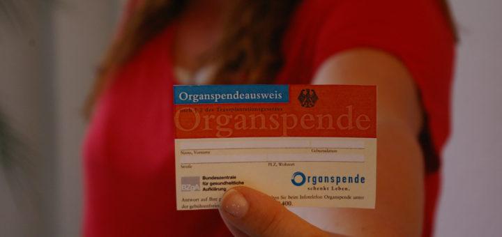 Knapp tausend Menschen in Niedersachsen warten derzeit auf ein lebensrettendes Organ. Foto: Harm