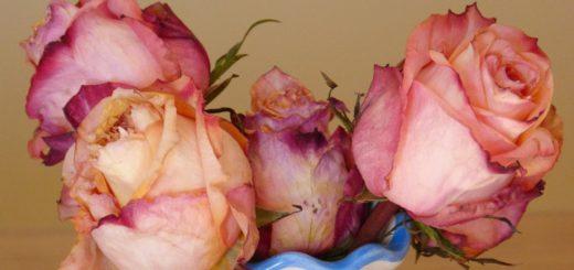 Bunte Rosen waren die Lieblingsblumen der Bremerin. Die Zahntechnikerin hatte 71 Jahre ihres 108-jährigen Lebens in Huchting verbracht.