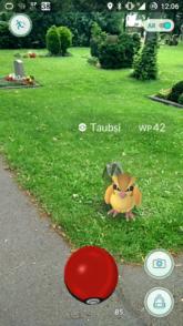 Pokémon Go Friedhof
