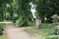 Der Friedhof ist der Ruhepol am Buntentorsteinweg. Foto: Barth
