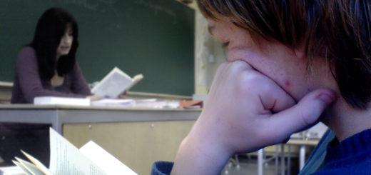 SPD und FDP streiten darüber, ob türkische Konsularlehrer weiterhin an Bremer Schulen unterrichten dürfen. Symbolfoto/wikimedia
