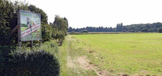 Auf der Grünfläche neben dem Friedhof Huckelriede soll die Gartenstadt Werdersee entstehen. Foto: Schlie