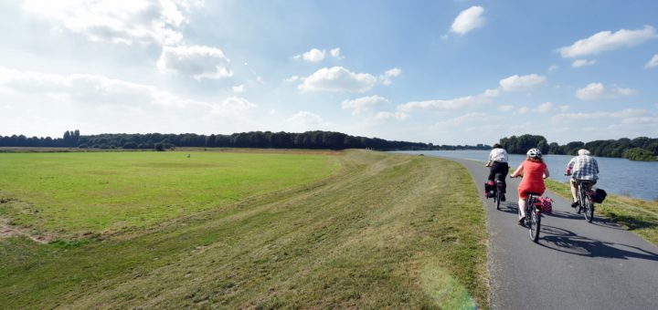 Noch grüne Wiese, bald Standort für 590 Wohneinheiten: Die frühere Friedhofserweiterungsfläche am Werdersee. Foto: WR
