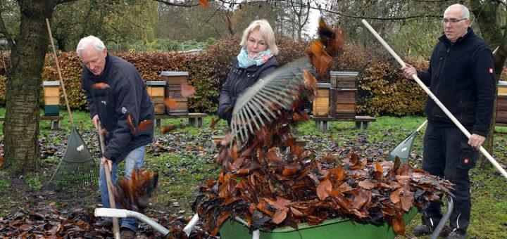 Im Frühjahr möchte der Delmenhorster Bürgerparkverein in Kooperation mit dem Rotary Club und dem Imker Uwe Roselieb einen Bienen-Lehrpfad im Kleingarten am Graftring einrichten. Am Wochenende haben die beteiligten Akteure das Gelände winterfit gemacht und in der Graft weitere Baum-Schilder aufgestellt. Foto: Konczak