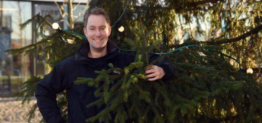 Oliver Huitema ist Tannenbaumexperte und betreibt von Bremen aus einen weltweiten Online-Handel mit Nordmanntannen. Foto: Schlie