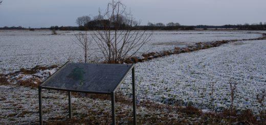 Schnee okay, aber vom Wasser keine Spur: Nicht nur Schlittschuhläufer, auch Naturschützer würden sich dieser Tage über vernässte Retentionsräume wie auf unserem Foto bei Tietjens Hütte freuen. Foto: Möller