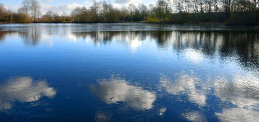 Der Delmegrundsee (Mili) zeigte sich in den vergangenen Tagen am Rand leicht angefroren. Foto: Konczak