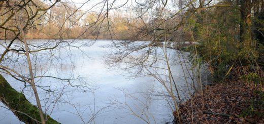 Blick auf den zugefrorenen Pulternsee.