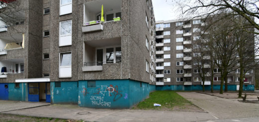 Triste Hochhäuser im Wollepark.