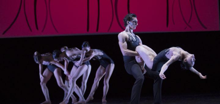 Im Vordergrund tanzen Gianluca Sermattei und Marié Shimada, dahinter agiert das Damenensemble. Foto: Stephan Walzl