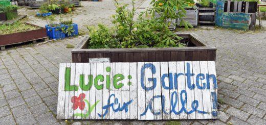 """Auf dem Lucie-Flechtmann-Platz beginnt heute die neue Gartensaison. Im Juni können dort beim """"Tag der offenen Gesellschaft"""" viele Leute an Tische und Tafeln kommen, und gemeinsam essen. Foto: Schlie"""