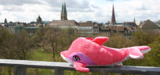Ob Losbude oder Schießstand: Auf der Osterwiese kann man wunderschöne Gewinne wie diesen pinken Stoffdelfin einfahren. Karussells, sowie was zu essen und zu trinken sind in unserem 20-Euro-Budget auch noch drin. Foto: Neloska