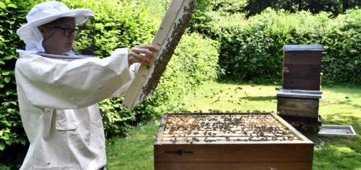 Imkerin auf dem Bienenlehrpfad in der Graft.