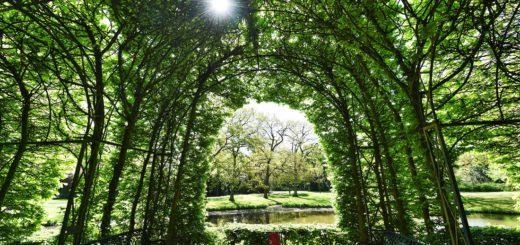 Im Bürgerpark soll der Tombola-Erlös vielfältig genutzt werden. Foto: Schlie
