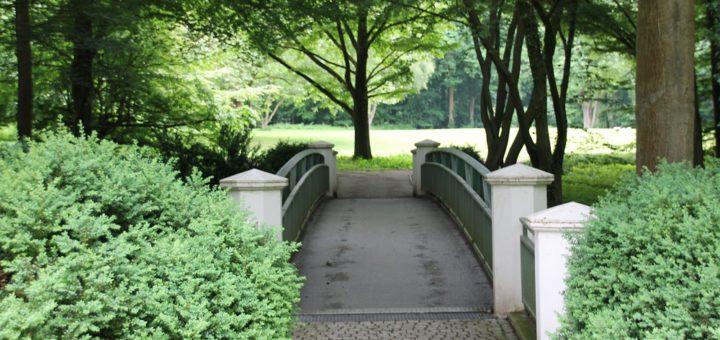 Im Rahmen der Burglesumer Kulturtage steht am 17. Juni unter anderem auch ein landschaftsgärtnerischer Spaziergang durch Knoops Park auf dem Programm. Foto: Spier