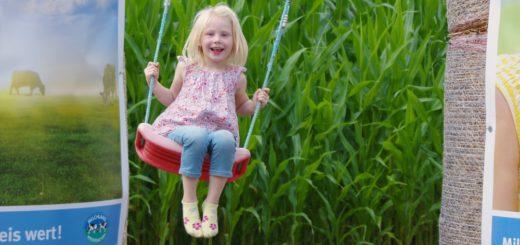 Die vierjährige Madleen hat das Maislabyrinth am Freitag mit ihrer Familie besucht und dabei diese Schaukel entdeckt. Fotos: gri