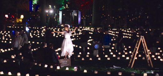 Der Irrgarten setzt sich aus zahlreichen Lichtern zusammen. Foto: gri