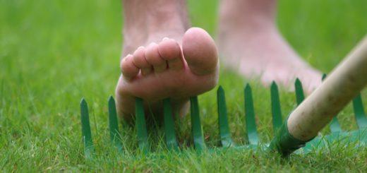Das tut weh: Bei der Gartenarbeit sollte man immer festes Schuhwerk tragen. Foto: gri