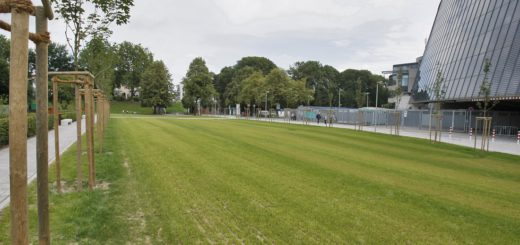 """Die neue """"Grüne Promenade"""" am Weserstadion. Foto: Barth"""