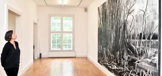 Sowohl aktuelle als auch ältere Arbeiten von Franz Burkhardt sind bis Ende Oktober in der Städtischen Galerie Delmenhorst zu sehen. Galerieleiterin Dr. Annett Reckert gibt erste Einblicke. Foto: Konczak
