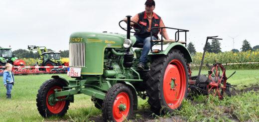 """Landwirtschaft kann man bei den """"LandTagenNord"""" hautnah erleben. Foto: Konczak"""