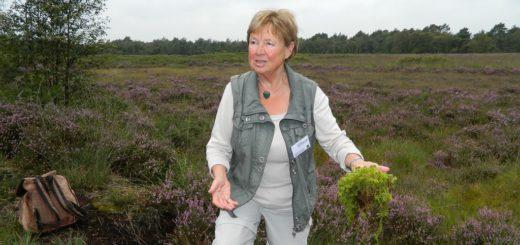 Das Torfmoos, berichtet Gästeführerin Sigrid Grimsehl, sei früher wegen seiner antibakteriellen Eigenschaften gern als Wundkompresse benutzt worden. Foto: Bosse