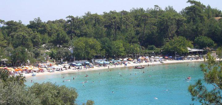 Tiefgrün trifft auf Gold und Cyan: Der Strand von Alikes – einer der beliebtesten auf Thassos.Fotos: Kaloglou