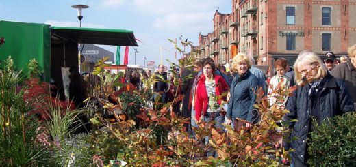 W9-Herbstmarkt-4sp. Foto: av