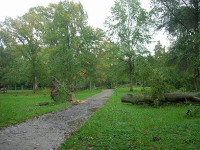 DSCN7290. Foto: Bürgerparkverein