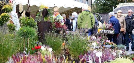 Traditionsveranstaltung lockt morgen bis 18 Uhr in die Delmenhorster Innenstadt. Foto: Eckert