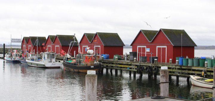 Ein Spaziergang lohnt sich am Fischereihafen von Boltenhagen. Dort wird der Fisch direkt vom Kutter aus verkauft. Foto: Füller