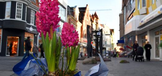 Wenn es nach dem Veranstaltungstrio geht, soll der Frühjahrszauber für eine blumenreiche, frühlingshafte, sinnenfreudige, musikalische und natülich volle Innenstadt sorgen. Foto: Konczak