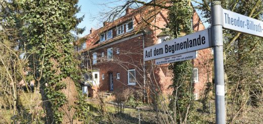 Die Gebäude der Siedlung Auf dem Beginenlande in Kattenturm müssen modernisiert werden. Die Mieter befürchten, ihre dazugehörigen Pachtgärten zugunsten von Neubauten zu verlieren. Foto: Schlie