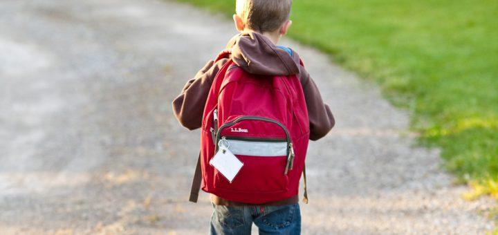 Die Polizei und die Verkehrswacht raten dazu, Kinder zu Fuß zur Schule zu schicken, sofern das möglich ist. Foto: Pixabay