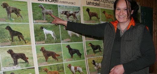 Bianca Wendelken-Osterloh bestand Montag ihre Jägerprüfung. Unser Foto zeigt sie an einer Schautafel im Bereich Jagdhundewesen. Foto: Möller
