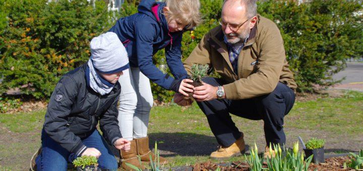 """Die Geschwister Vilja und Joris waren mit ihren Eltern auf dem Weg zum Wochenmarkt. Zuvor machten sie jedoch einen kleinen Abstecher auf die Bürgerwiese. Dort halfen sie Carsten Hoffmann vom Bürgerparkverein """"Unsere Graft"""" beim bepflanzen der dortigen Blumenbeete. Foto: gri"""